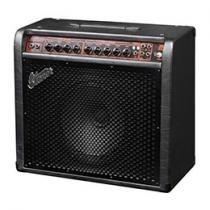 Combo Amplificador para Guitarra com 100W