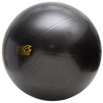 Fit Ball 55 Antiestouro - Pretorian Training FBT55 PP