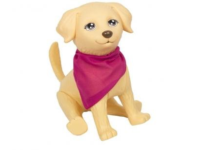 Pet da Barbie Pet Veterinária Pupee - 6 Peças