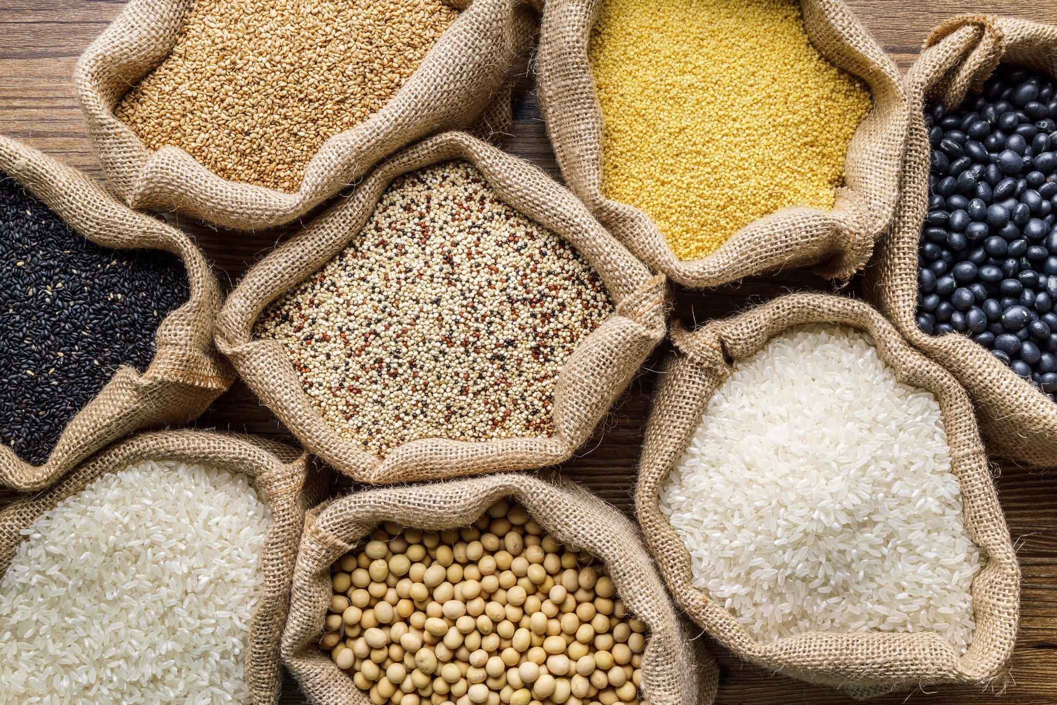 Grãos, sementes e cerais: o que são? - Lu Explica - Magazine Luiza